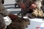미 해병대, 신형 개인용 정수장비 IWPS II 지급 예정