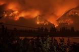 폭발적인 美 서부 산불, 좌익들에 의한 사보타주